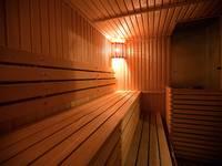 lenin-photo-sauna-2